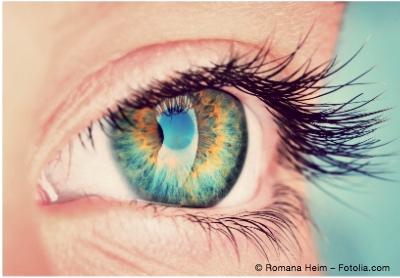 Bild von Auge an Gehirn - So funktioniert das Sehen