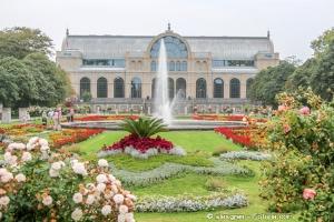 Bild von Die Flora – das Lieblingskind von Mutter Colonia