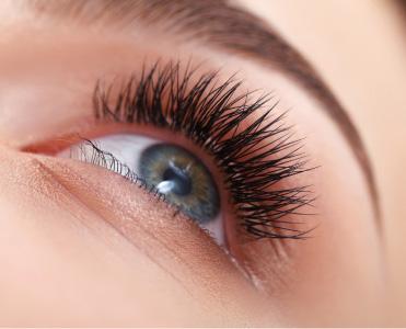 Bild von Wimpern und Augenbrauen