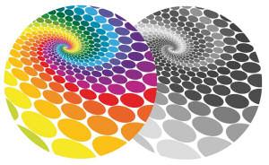 Bild von Was versteht man unter Farbenblindheit?