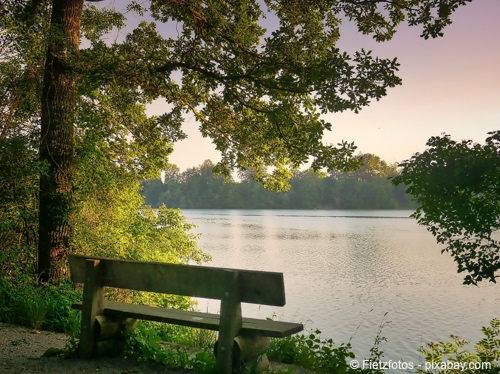 Bild von Sehenswert: Die Ville-Seen - Naherholung und Wissenswege