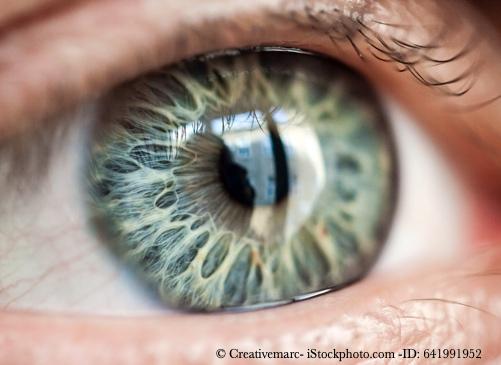 Bild von Augen und Sehen - Nichts geht ohne die Makula