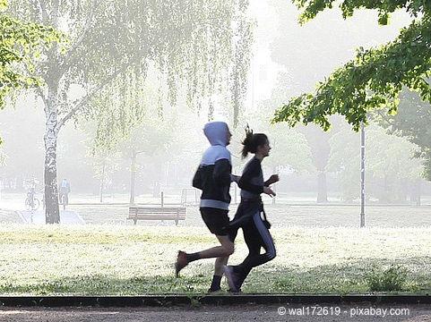 Bild von Bleiben Sie auf dem Laufenden - so gesund ist Ausdauersport
