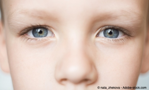 Bild von Die Augenfarbe – Nutzen oder reine Dekoration?